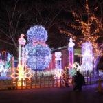 宮ヶ瀬湖クリスマスツリーを観に行った