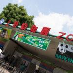 上野動物園で写真を撮ってきた!
