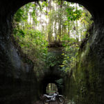 千葉・素掘りトンネル・林道ツーリング