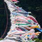 1200匹の鯉のぼり『泳げ鯉のぼり相模川』へ行ってきた