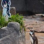 けものフレンズコラボ中の東武動物公園へ行ってきた