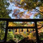 2020京都紅葉旅行1日目