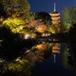 2020京都紅葉旅行2日目