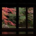 2020京都紅葉旅行3日目